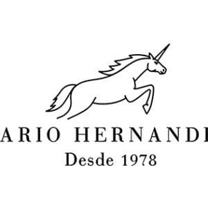 Mario Henández