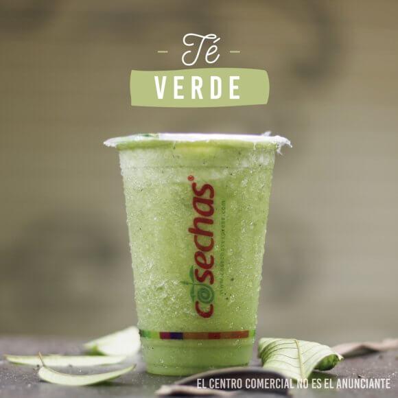 Cosechas Té Verde